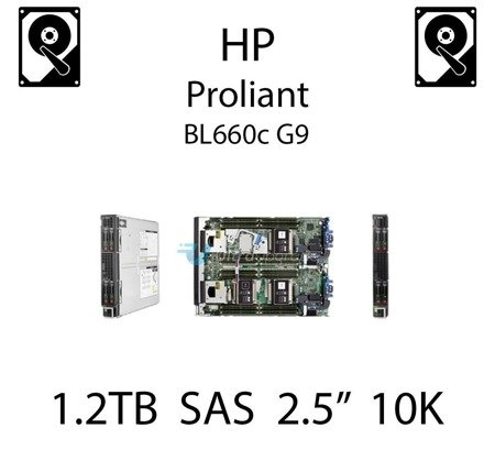 """1.2TB 2.5"""" dedykowany dysk serwerowy SAS do serwera HP ProLiant BL660c G9, HDD Enterprise 10k, 6Gbps - 697574-B21 (REF)"""