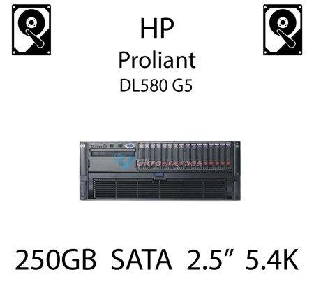 """250GB 2.5"""" dedykowany dysk serwerowy SATA do serwera HP ProLiant DL580 G5, HDD Enterprise 5.4k, 3GB/s - 460426-001   (REF)"""