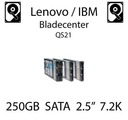 """250GB 2.5"""" dedykowany dysk serwerowy SATA do serwera Lenovo / IBM Bladecenter QS21, HDD Enterprise 7.2k, 600MB/s - 81Y9722"""